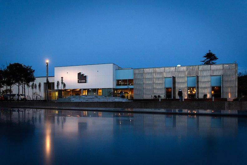 The Dowse Art Museum Mark Tantrum