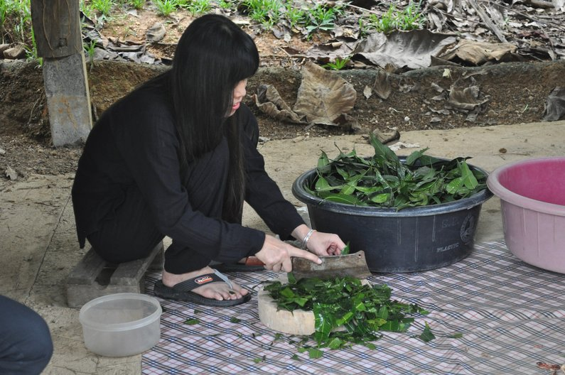 Dujdao Barikut from Sala Village cleating a dye from the mango leaves in her garden Alison Welsh