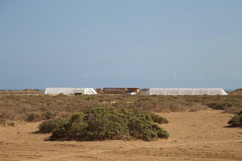 Seawater Greenhouse site in Berbera, Somaliland © Seawater Greenhouse Ltd
