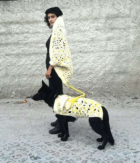 Project Coeo for the tech-savvy fashionable dog lover © Luis Albuquerque