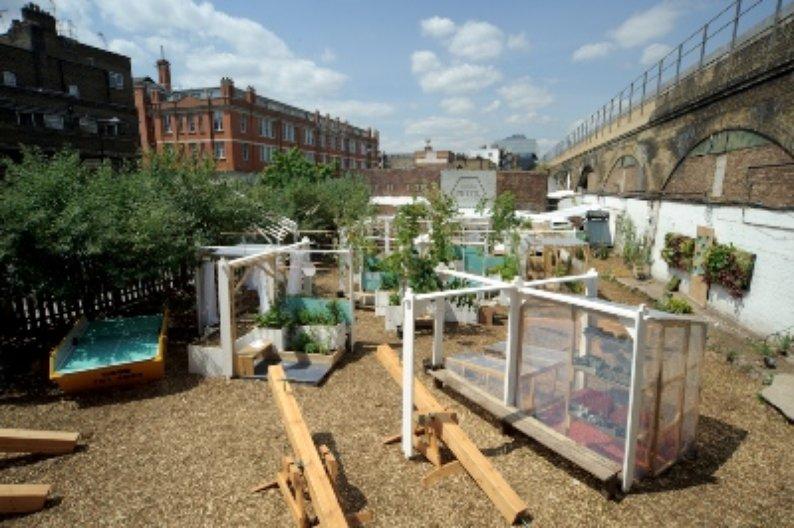 Urban Physic Garden. Photo Courtesy: Wayward Plants