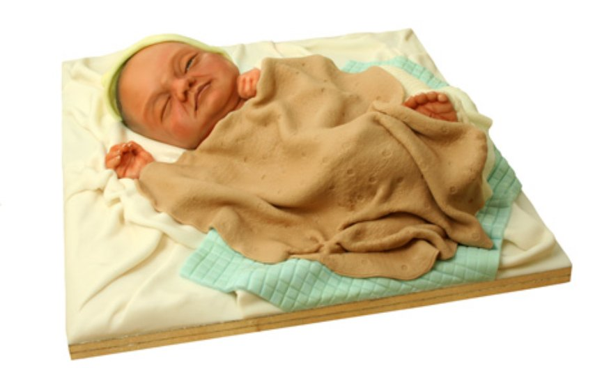 Sculpted baby cake by Michelle Wibowo, 2006, © Michelle Sugar Art
